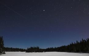 Картинка небо, звезды, снег, деревья, пейзаж, ночь, природа, силуэты