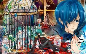 Обои vocaloid, слёзы, Kaito