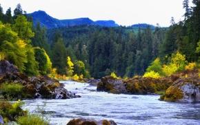 Картинка осень, лес, небо, горы, река, камни