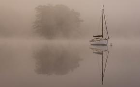 Картинка деревья, пейзаж, туман, лодка, водоем, обои от lolita777, лаконично