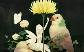 Картинка цветок, птицы, бабочка, крылья, фея, Девочка