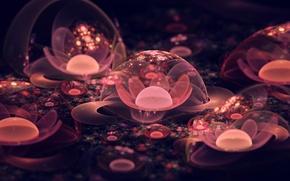 Картинка цветок, макро, абстракция, пузыри, flowers