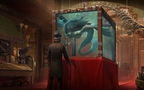 Картинка человек, книги, аквариум, шляпа, существо, двери, арт, трость, мужчина, музей, скелеты, цилиндр, экспонаты