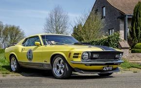 Картинка Mustang, Ford, Yellow, Mach 1