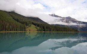 Картинка лес, лето, облака, горы, природа, туман, озеро