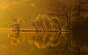 Картинка осень, лес, деревья, закат, озеро, отражение, остров