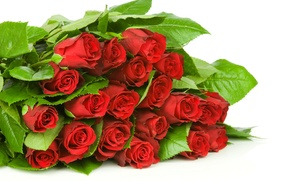 Картинка листья, цветы, букет, бутоны, flowers, leaves, bouquet, red roses, красные розы, buds