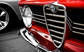 Обои макро, красный, Alfa Romeo, red, logo, альфа ромео, macro