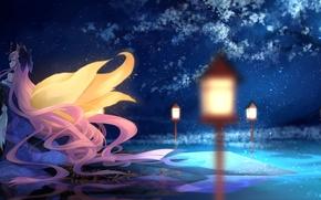 Картинка вода, девушка, ночь, отражение, дерево, аниме, арт, фонари, ушки, fate/stay night, хвосты, caster, bzerox