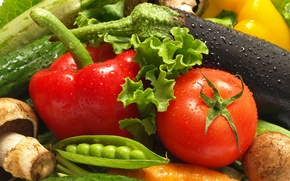 Обои перец, картофель, овощи, горошек, гриб, натюрморт, вода, томат, помидор, баклажан, огурец, капли, морковь