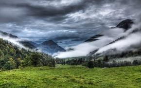 Картинка лес, облака, горы, природа, туман, луг