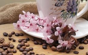Картинка цветы, кофе, ветка, чашка, ткань, мешковина, блюдце, зёрна