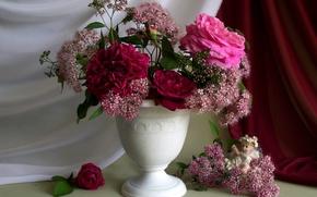 Картинка цветок, цветы, природа, букет, ангел, шиповник, ангелок
