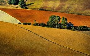 Картинка поле, деревья, дом, холмы