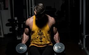 Картинка muscles, gym, dumbbells, bodybuilder
