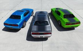 Картинка Dodge, Challenger, Трио, Muscle Cars, R/T 2015, SXT 2015