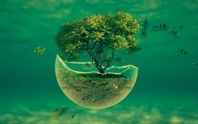 Картинка трава, вода, рыбки, дерево, океан, земля, осколок