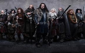 Картинка оружие, человек, войны, гномы, посох, The Hobbit An Unexpected Journey, Хоббит Неожиданное путешествие