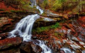 Картинка осень, лес, листья, природа, река, водопад