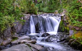 Картинка лес, деревья, река, камни, водопад, поток, склон