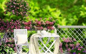 Картинка трава, цветы, природа, чай, кофе, сад, grass, nature, веранда, flowers, garden, coffee, tea, veranda