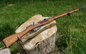 Картинка оружие, пень, винтовка, Мосина