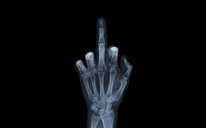 Картинка обои, рука, кости, рентген, wallpaper, снимок, фак ю, Fuck You
