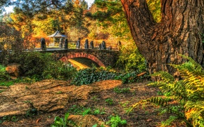 Обои осень, деревья, мост, парк, HDR, беседка, кусты