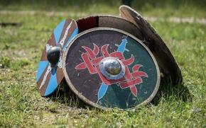 Картинка трава, щиты, викингов