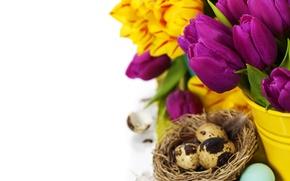Картинка тюльпаны, flowers, tulips, purple, eggs, easter, bouquet