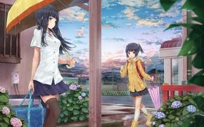 Картинка цветы, зонтик, девушки, дома, чулки, зонт, арт, гортензия, hourainingyou