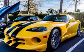 Картинка viper, yellow, dodge, V10, Phase II SR Viper RT/10 GTS