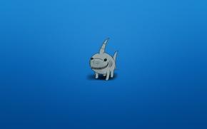 Обои минимализм, акула, синий фон, зубастая, улыбка, плавниковолапый вид, shark