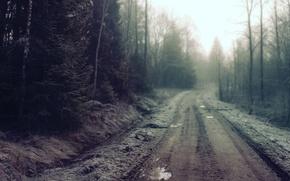 Картинка дорога, лес, грязь