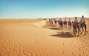 Картинка desert, sand, tourism, camels, caravan