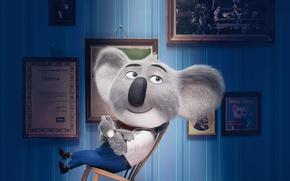 Картинка film, animated film, Universal Pictures, Matthew McConaughey, Illumination Entertainment, koala, Sing, Buster Moon, cinema movie