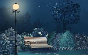 Картинка свет, скамейка, ночь, парк, арт, фонарь