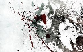 Картинка брызги, волк, Белый