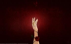 Картинка бабочка, роза, рука, шипы