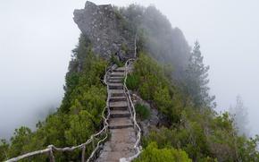 Картинка туман, гора, лестница, ступени