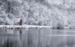 Обои зима, лес, дом, озеро