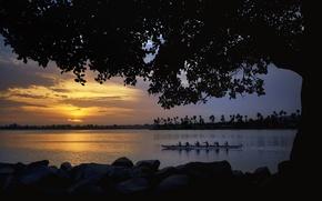 Картинка деревья, закат, река, берег, лодка, команда, плавание, каноэ