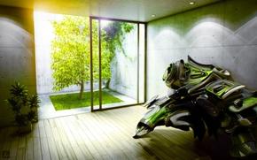 Обои зелень, свет, комната
