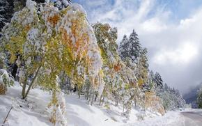 Обои небо, облака, дорога, осень, зима, снег
