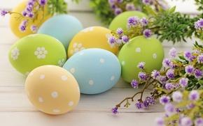 Картинка цветы, яйца, пасха, крашенки