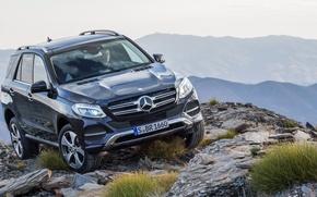 Картинка Mercedes-Benz, 4MATIC, 2015, GLE, 250-d