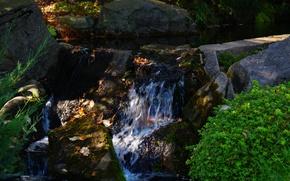 Картинка листья, вода, ручей, камни