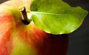 Обои макро, яблоко, еда, фрукт