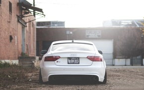 Картинка Audi, white, rear, low, stance