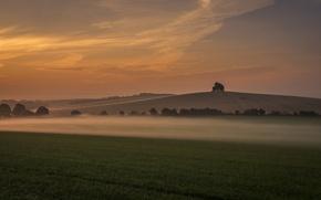 Картинка трава, закат, туман, дерево, холм, Великобритания, grass, sunset, tree, fog, hill, United Kingdom, Оксфордшир, Oxfordshire, …